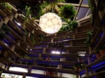 Buffalo Treehouse Donates Award Winning Structure for Raffel